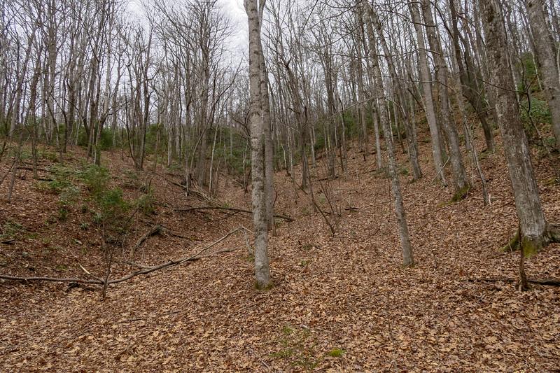 Poundingmill Trail -- 2,900'