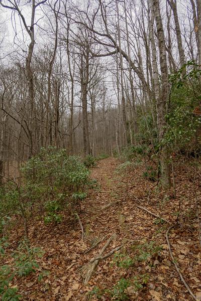 Poundingmill Trail -- 2,940'