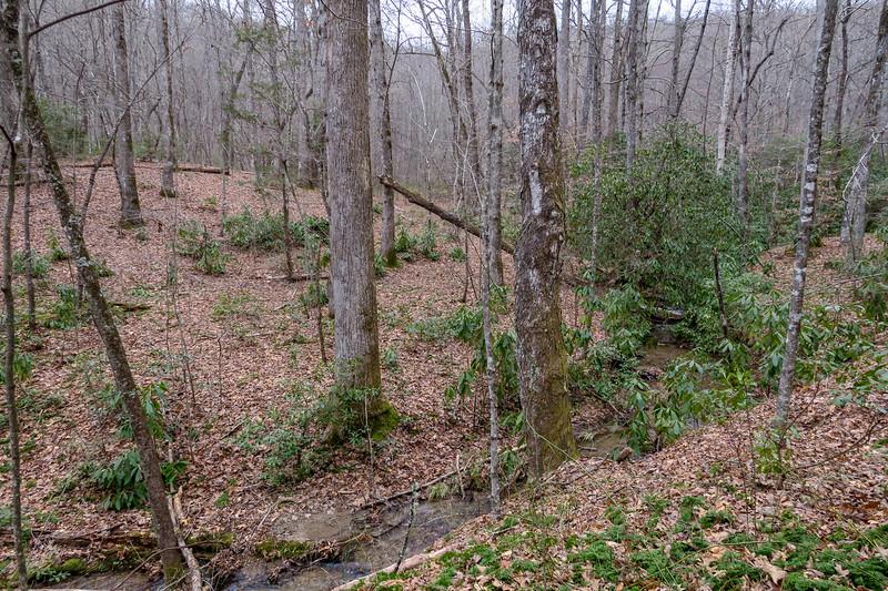 Poundingmill Trail -- 2,850'