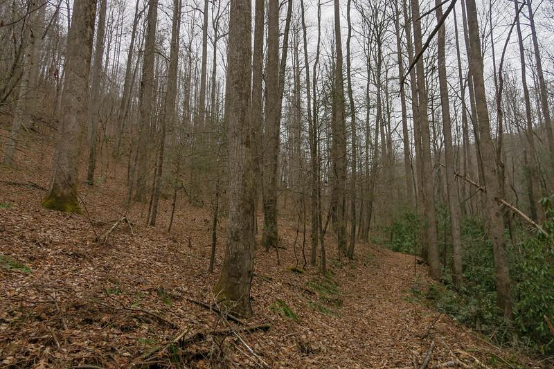 Poundingmill Trail -- 2,580'