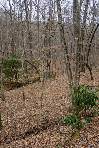 Poundingmill Trail -- 2,880'