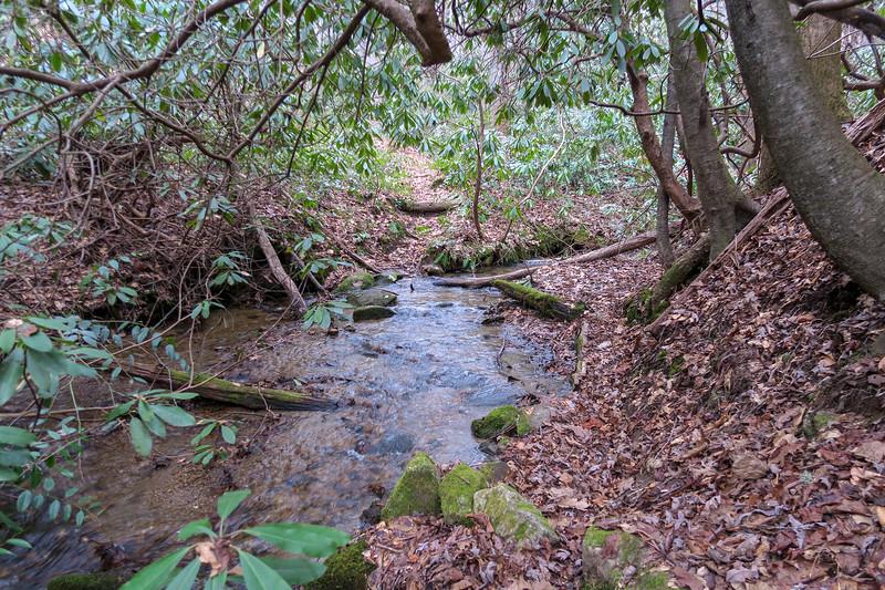 Poundingmill Trail (Crossing #9) -- 2,710'
