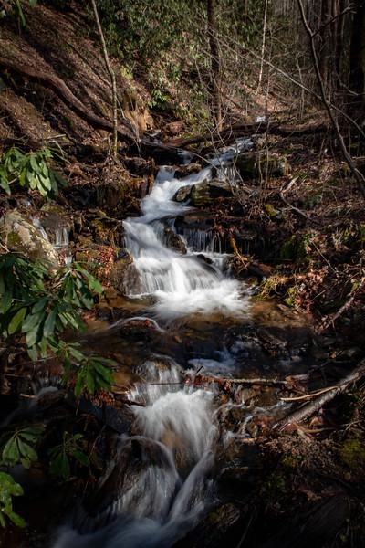 Pressley Cove Creek -- 2,960'