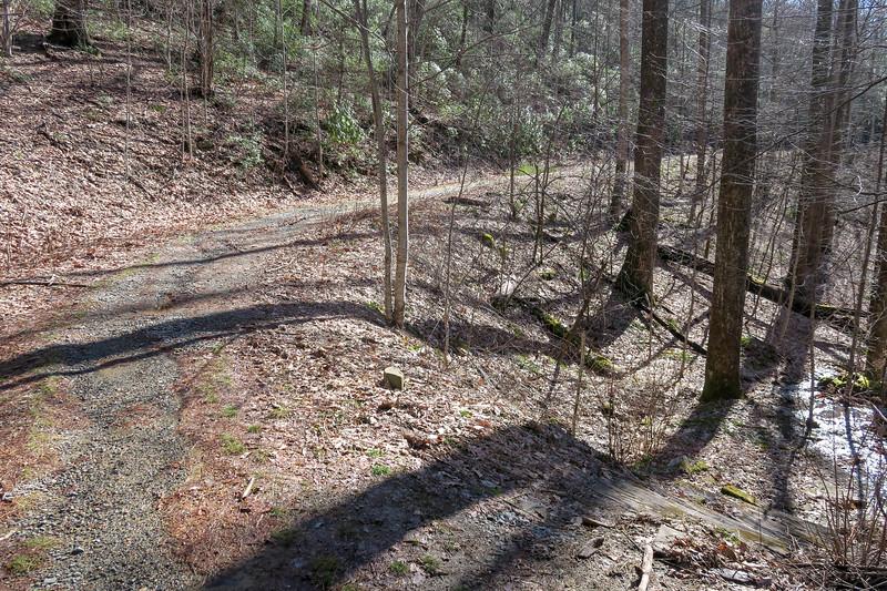 Pressley Cove Trail @ F.R. 5099 -- 3,250'