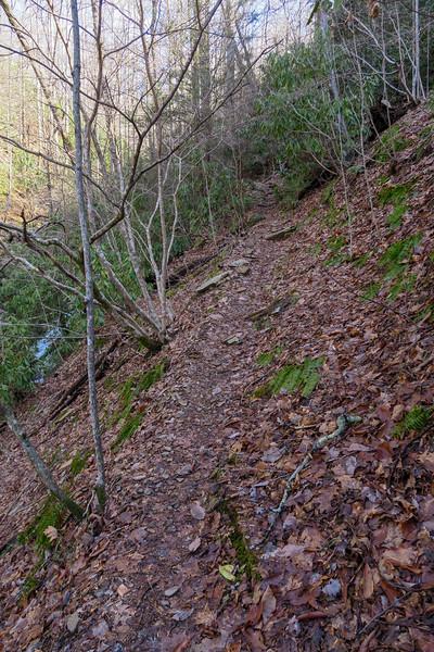 Pressley Cove Trail -- 3,020'