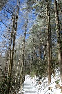 Rainbow Falls Trail -- 2,600'