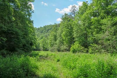 Riverside Trail -- 2,340'