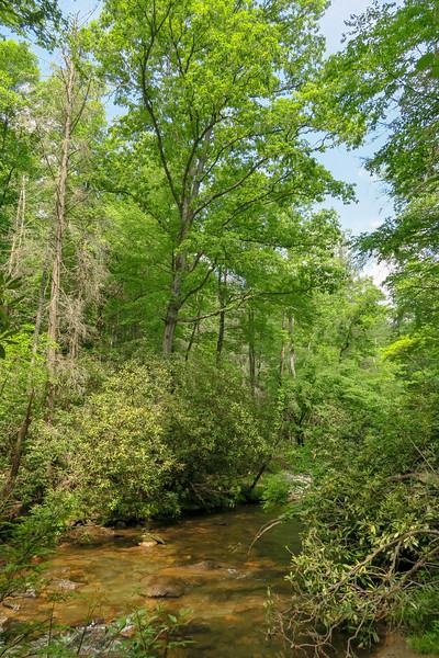 Riverside Trail (Bradley Creek Crossing #3) -- 2,290'