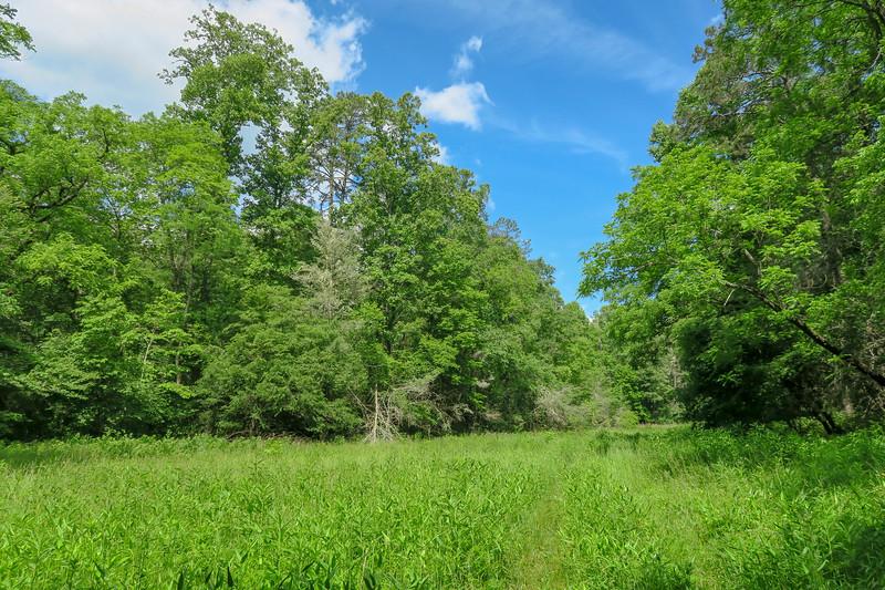 Riverside Trail -- 2,330'