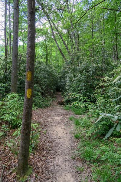 Riverside Trail -- 2,400'