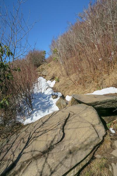 Sam Knob Summit Trail -- 5,950'