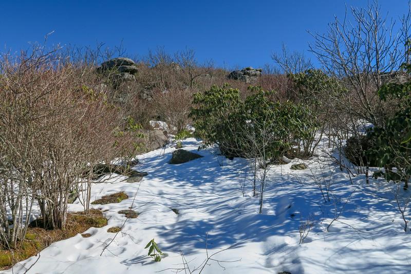 Sam Knob Summit Trail -- 5,990'