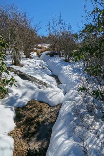 Sam Knob Summit Trail (South Summit) -- 6,030'