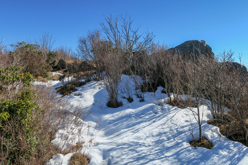 Sam Knob Summit Trail (South Summit) -- 6,040'