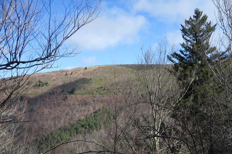 Sam Knob Trail -- 5,790'