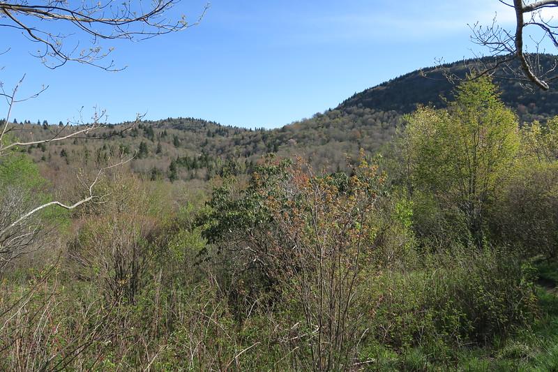 Sam Knob Trail -- 5,520'