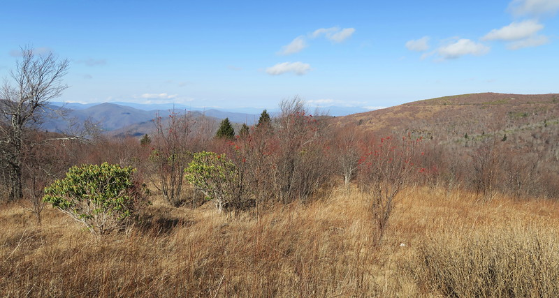 Sam Knob Trail -- 5,780'