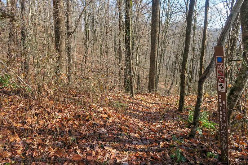 Seniard Ridge Trail -- 3,440'