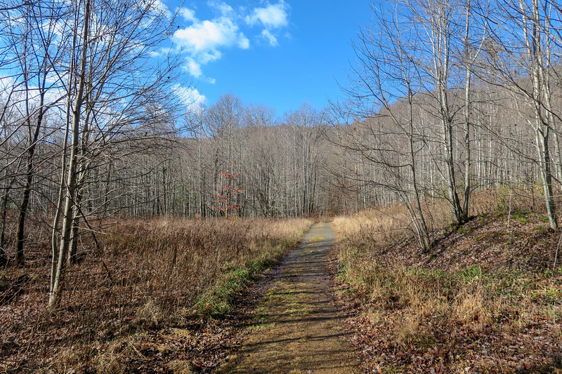 Seniard Ridge Trail/F.R. 5043 -- 3,220'