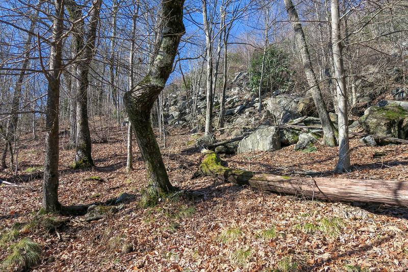 Seniard Ridge Trail -- 4,620'