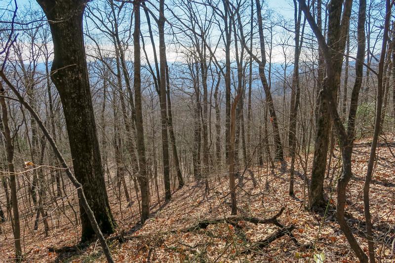 Seniard Ridge Trail -- 4,200'