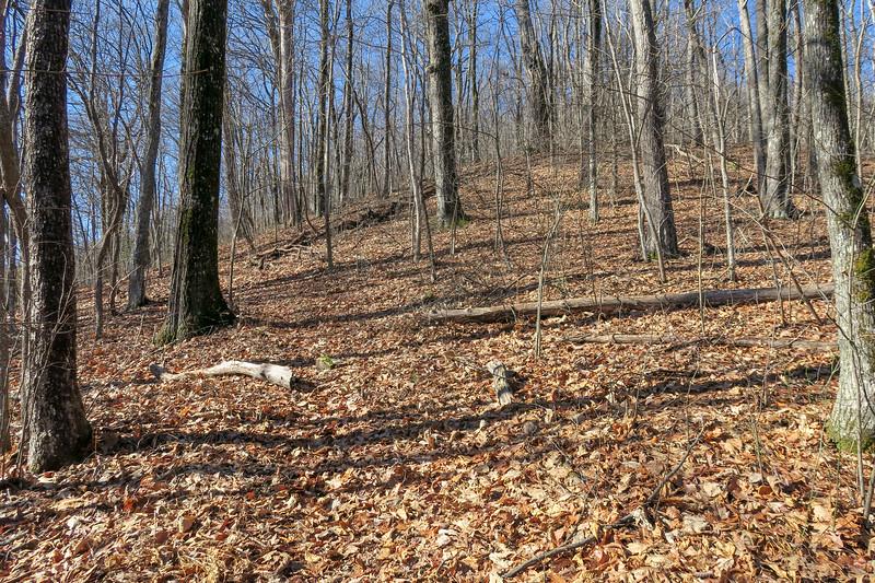 Seniard Ridge Trail -- 4,150'