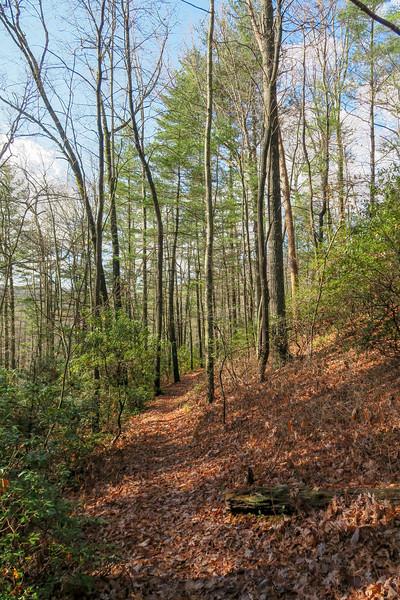 Seniard Ridge Trail -- 3,250'