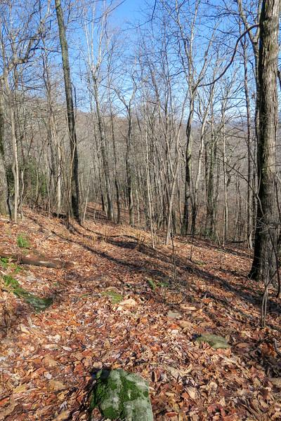 Seniard Ridge Trail -- 3,850'