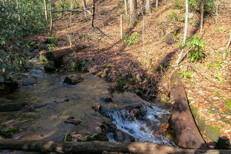 Seniard Ridge Trail @ Big Bearpen Branch -- 3,440'