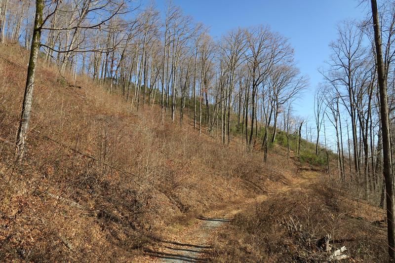 Seniard Ridge Trail/F.R. 5043 -- 3,240'