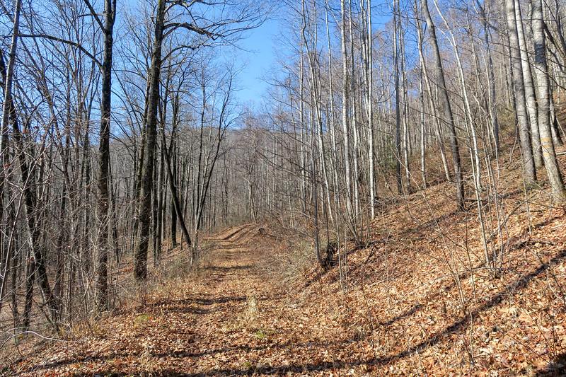 Seniard Ridge Trail/F.R. 5043 -- 3,400'