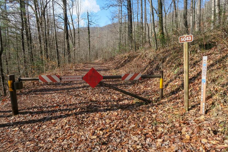 Seniard Ridge Trail @ F.R. 475B/F.R. 5043 Junction -- 3,200'