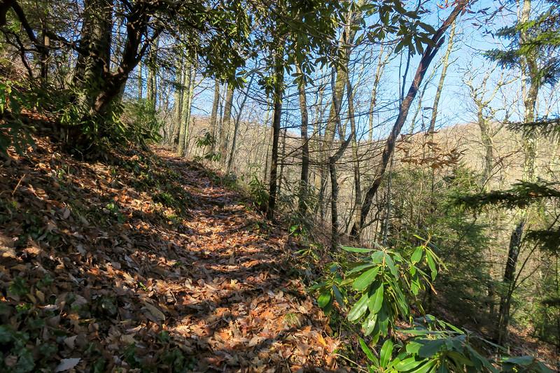 Seniard Ridge Trail -- 3,900'
