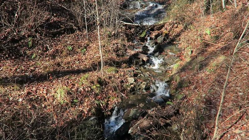 Logging Road Falls -- 3,220'