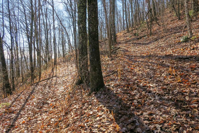 Seniard Ridge Trail -- 3,800'