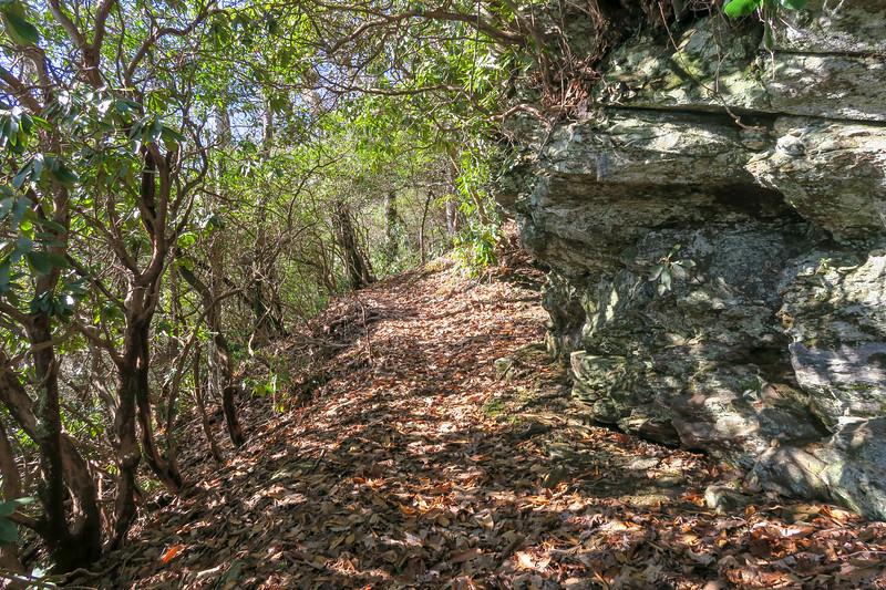 Seniard Ridge Trail -- 4,440'
