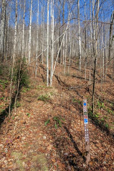 Seniard Ridge Trail -- 3,420'