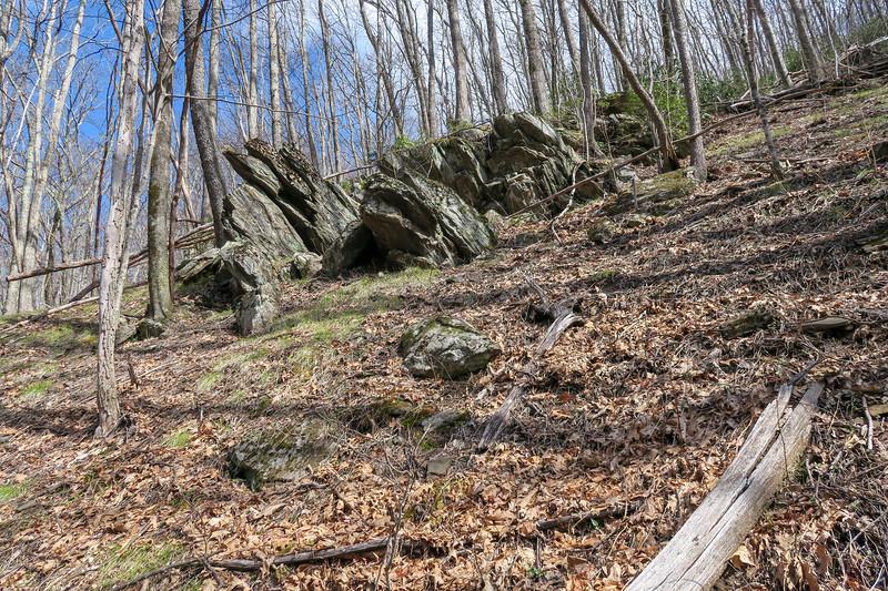 Shining Creek Trail -- 4,350'