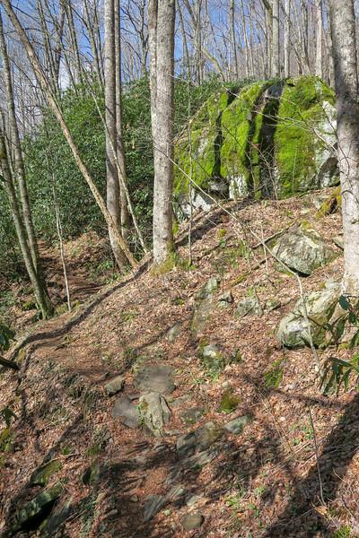 Shining Creek Trail -- 3,750'