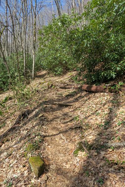 Shining Creek Trail -- 4,050'