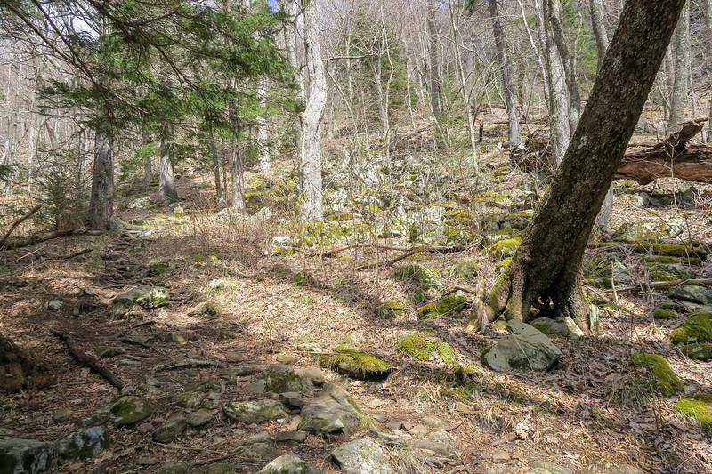 Shining Creek Trail -- 5,160'