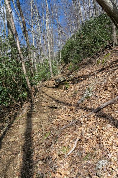 Shining Creek Trail -- 4,240'