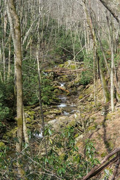Shining Creek -- 3,900'