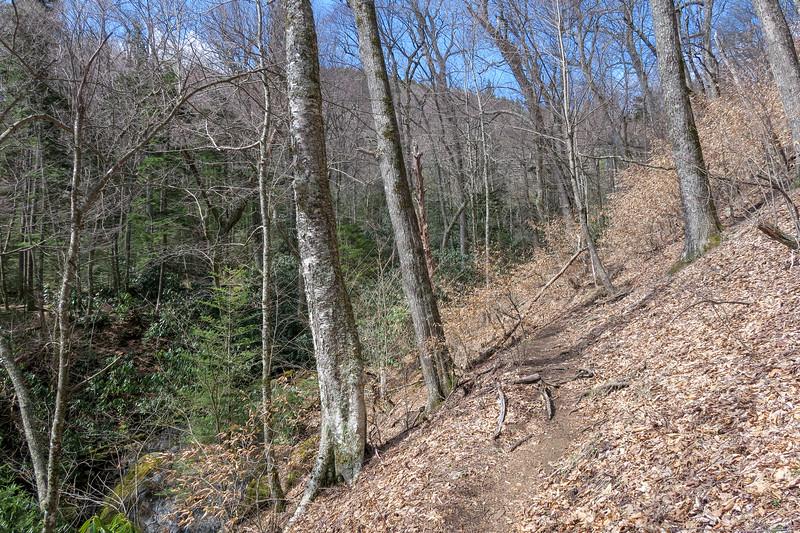 Shining Creek Trail -- 5,000'