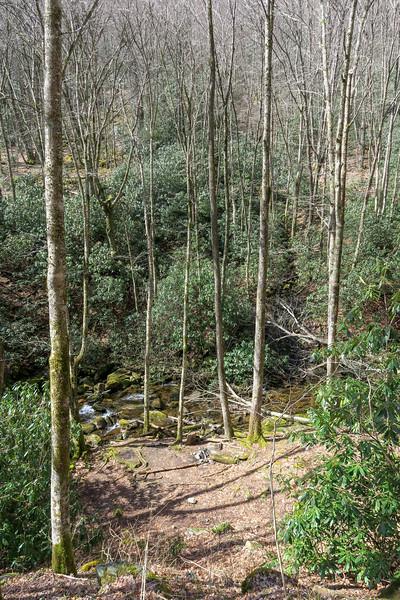 Shining Creek Trail -- 3,880'