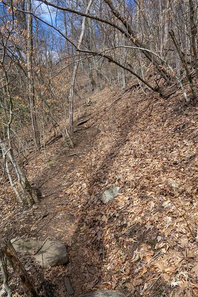 Shining Creek Trail -- 4,920'