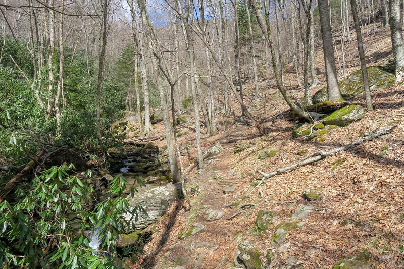 Shining Creek Trail -- 4,750'