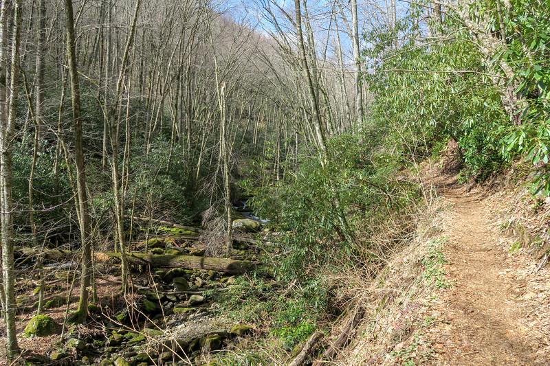 Shining Creek Trail -- 3,700'
