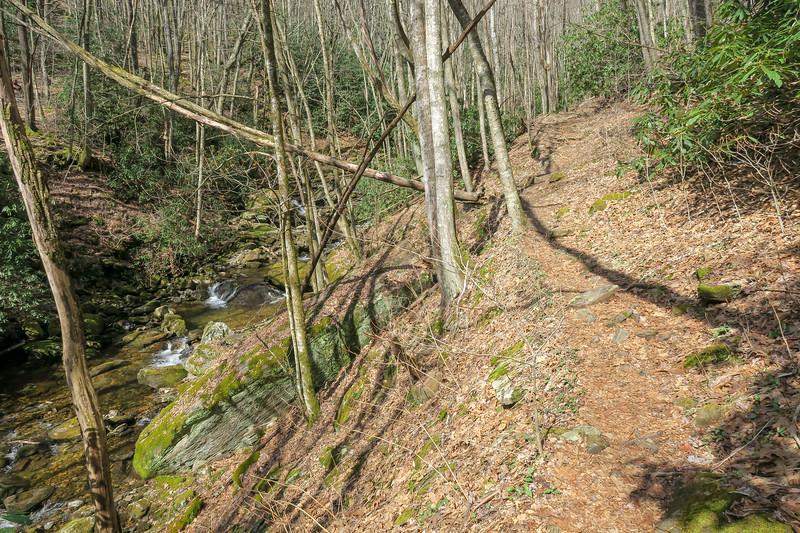 Shining Creek Trail -- 3,960'