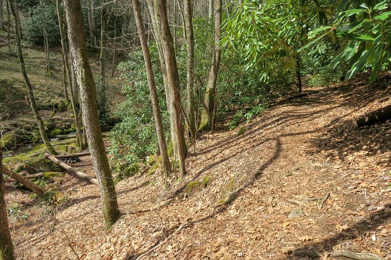 Shining Creek Trail -- 4,140'
